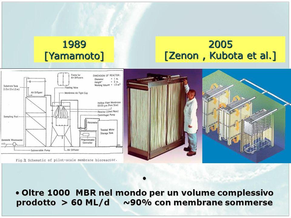 1989 [Yamamoto] 2005 [Zenon , Kubota et al.]